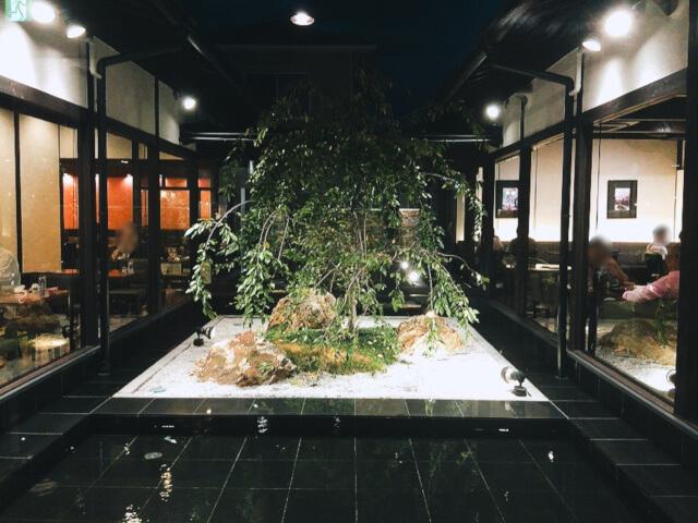 桜珈琲 中庭